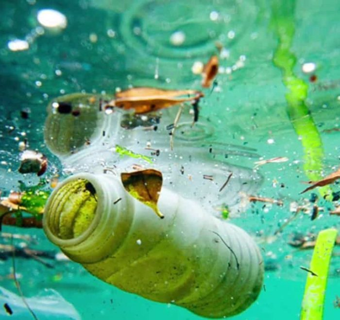 Ocean Pollution Bottle