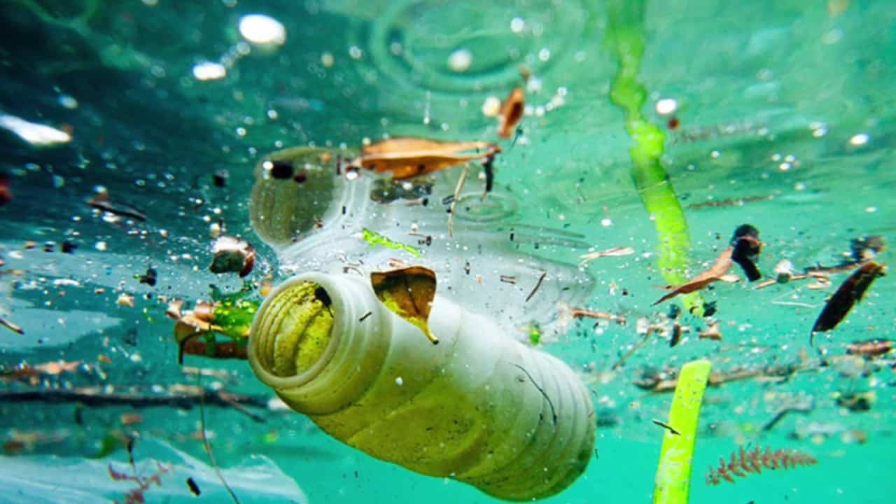 Ocean Pollution Bottle