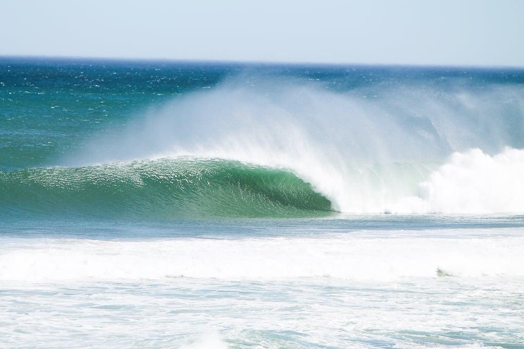 surfari-south-africa