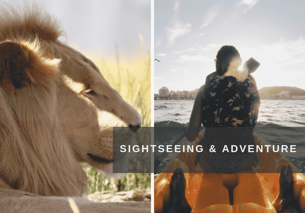Sightseeing and adventures on safari and kayaking in South Africa.