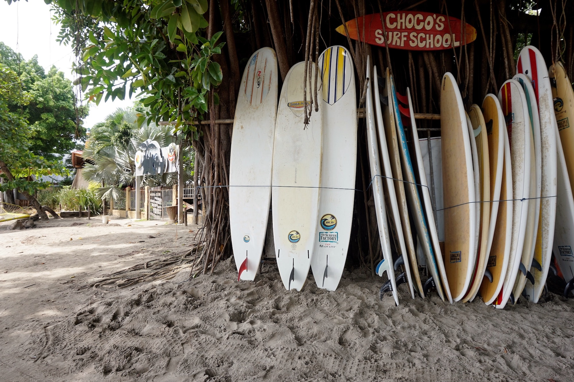 what surfboard is best for beginners